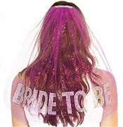 Gem Bride To Be Rhinestone Veil: Hot Pink